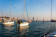 Sail Jam (The Gadget Photographer) Tags: ocean isleofwight sailing boating tobyhetherington©2018 gbr3341l roundtheisland2018 solent coast rti2018 sea vancouver27 shamaya