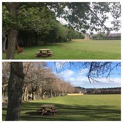 Roseburn Park (John_McK) Tags: roseburn park scotland edinburgh winter summer seasons trees parkland murrayfield