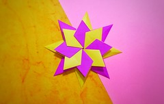 Origami Dray Star haven't you ever heard about it if you're not check it out the Link  https://youtu.be/gm0Va36cQkk  #origami #origamipaper #origamistar #paperstar #paper #papercraft #origamiheart #heart #paperheart #diy #diystar #paperorigami #kami #pape (shakerkumar1) Tags: origamipaper paperorigami origamiheart paperkami paperheart heart paper origami diystar star moulderorigami paperstar complexorigami papercraft kami diy origamistar