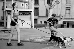 Dancing with dogs (Gérard Barré) Tags: decisive moment street portrait scene girl boy photographie soul faces creatives camera eye lens montpellier france city candid people gens rue musée museum plage beach concert group groupe dog chien animal love glasses legs selfie art streetshooter shot