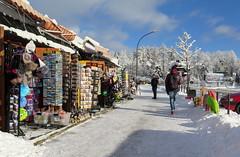 Zakopane-November'17 (147) (Silvia Inacio) Tags: zakopane poland polónia polska snow neve tree árvore shop