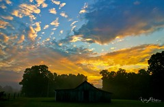 Summer Sunrise (Catch the Moment Photography) Tags: landscapephotography landscapes sunrise dawn clouds barn pasture field trees wadehooperphotography sky scenic summer daybreak warmcolors