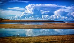 Avoca beach_0283