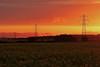 Pylon sunset (Troonafish) Tags: canon canon5d2 canon5dii canon5dmark2 canon5dmarkii 5d2 5dii 5dmark2 5dmarkii gavintroon gavtroon 2018 scottishlandscape scottishscenery scottishcountryside landscape landscapes countryside landscapephotography scenery scottish aberdeenshire scotland pylon pylons electricitypylon canola oilseedrape oilseedrapefield field fields farming agriculture crop crops plant plants plantlife vegetation sunset sunsets sun portsoy rural