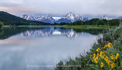 Oxbow Bend - Grand Teton National Park (RondaKimbrow) Tags: oxbowbend grandtetonnationalpark wyoming mountain wildflowers river view landscape classic clouds notquiteasunrise