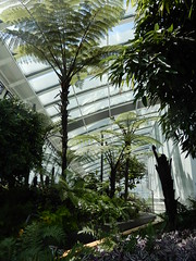 The Sky Garden (John Steedman) Tags: skygarden london uk unitedkingdom england イングランド 英格兰 greatbritain grandebretagne grossbritannien 大不列顛島 グレートブリテン島 英國 イギリス ロンドン 伦敦