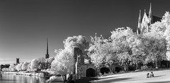 Summer Evening, Worcester (Infrared) (Nigel Snape) Tags: 2018 archway infrared riversevern riverside trees worcester blackwhite cathedral