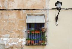 (Fernando Crego) Tags: caravaca caravacadelacruz murcia ventana window casa house facade fachada building xt2 23mm