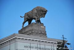 ВДНХ, Москва  InterNetri  154