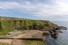 Next Morning at Latheronwheel harbour (doublejeopardy) Tags: scotland harbour latheronwheel unitedkingdom gb