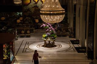 Joy of Orchids - Hongkong 172/188