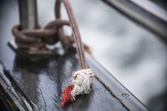 knot (allanodyne) Tags: knot boat bay wildatlanticway ocean rope detail beautiful color wooden