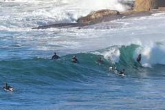 2018.07.15.08.54.13-ESBS Bronte red cap seq10-003 (www.davidmolloyphotography.com) Tags: bodysurf bodysurfing bodysurfer bronte sydney newsouthwales australia surf surfing wave waves