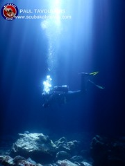 """Kalymnos Diving • <a style=""""font-size:0.8em;"""" href=""""http://www.flickr.com/photos/150652762@N02/43371599391/"""" target=""""_blank"""">View on Flickr</a>"""