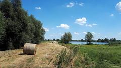 LANDSCAPE (JaapCom) Tags: jaapcom landscape landschaft landed clouds trees water wilsum dutchnetherlands natuur nature