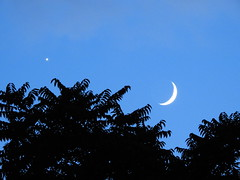 moon and venus - July 2018 (pepitaphotos) Tags: moon crescentmoon venus planet astrophotography space dusk night silhouette