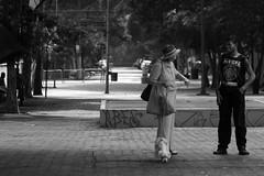 1671 2 (*Ολύμπιος*) Tags: sãopaulo street streetlife streetphotography streetphoto sunday domenica domingo diaadia daybyday donna downtown gente girl garota giovanni garotas girls people persone persons pessoas foto fotoderua femme woman women walk walking city cidade città ciudad cittè centro ciutat avenidapaulista avpaulista pb pretoebranco bw bn biancoenero blackandwhite noiretblanc
