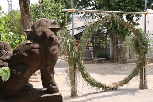 神社・茅の輪くぐり