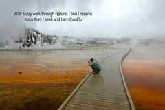 Thankful (Wildside Galleries) Tags: yellowstone thankful nature neveralone mychurch geyser
