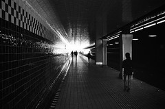 can you see the lights? (gato-gato-gato) Tags: 35mm asph amsterdam europa europe ferien holland iso400 ilford ls600 leica leicamp leicasummiluxm35mmf14 leicasummiluxm50mmf14asph mp messsucher nl netherlands noritsu noritsuls600 strasse street streetphotographer streetphotography streettogs summilux wetzlar adventure analog analogphotography aspherical believeinfilm black classic film filmisnotdead filmphotography flickr gatogatogato gatogatogatoch holidays homedeveloped manual mechanicalperfection rangefinder streetphoto streetpic tobiasgaulkech travel trip white wwwgatogatogatoch noordholland niederlande manualfocus manuellerfokus manualmode schwarz weiss bw blanco negro monochrom monochrome blanc noir strase onthestreets