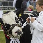 Northumberland County Show 2013