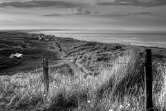 Beyond (Missy Jussy) Tags: campingtrip camping tent fixedfocallength primelens holiday trip northumberland northeastcoast mono monochrome moodylandscape atmosphere bw blackwhite blackandwhite sky clouds horizon landscape land sea seaside sand sanddunes waves path fence barbwire sunlight evening eveningsun 50mm ef50mmf18ll ef50mm canon50mm fantastic50mm canoneos5dmarkii canon5d canon5dmarkll canon hemscotthillfarm
