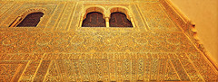 Alhambra Walls (Thought Knots Design) Tags: alhambra spain granada palace temple temples castle castles palaces art design graphic sculpture fresco relief bas ceiling walls arch arches archway frame frames door doorway court courtyard moors muslim arabic carving carvings thought knots window spanish espana generalife ruins fortress catholic historic roman myrtles charles v comares mexuar geometry sacred geometric oratory tower dome domes domed nasrid gilded patio hall ambassadors columns pillar pillars