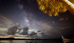 From the boat ramp (Jim Wisinski) Tags: nightsky night milkyway water sky palm stars starphotography astrophotography astralphotography