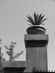 Archtectural Decor  (2) (jHc__johart) Tags: plant planter bw monochrome rhgallery outdoors kansas shadow