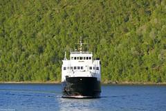 """""""Helgøy"""" (K Horsevik) Tags: helgøy thn torghatten nord senjafergene senjaferger senja botnhamn ferge ferje ferry"""