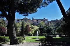 Toledo (Anavicor) Tags: jardín árbol parque hierba edificio casa ciudad town toledo castillala mancha castillalamancha españa spain spanien espagne