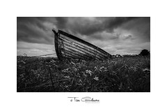 Adrift in a sea of flowers (timgoodacre) Tags: boat boating boats sea seaside wreck shipwreck flowers clouds sky blackwhite blackandwhite black monochrome mono grass landscape