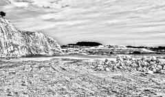 18-198 (lechecce) Tags: 2018 landscapes nature blackandwhite nikonflickraward flickraward netartii awardtree trolled sharingart artdigital