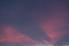 RXV00824 (Zengame) Tags: rx rx100 rx100v rx100m5 rx100mk5 sony zeiss architecture illuminated illumination japan landmark night sky skytree tokyo tokyoskytree tower スカイツリー ソニー ツアイス 夜 日本 東京 東京スカイツリー 空 台東区 東京都 jp