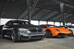 BMW M3 F80, Lamborghini Gallardo LP570-4 Superleggera (Edrian1011) Tags: carspotting automotivephotography bmw m3 mpower bmwm3 lamborghini gallardo f80 m3f80