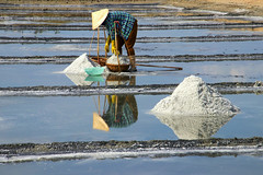 Female worker filling her baskets with salt at the Hon Khoi Salt Ponds, Vietnam (Frans.Sellies) Tags: img7744 vietnam