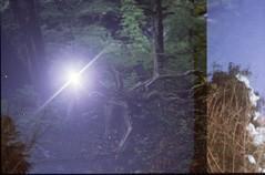 (✞bens▲n) Tags: pentax lx provia 400x fa 40mm f2 film analogue slide multiexposure moon night tree woods stars
