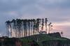 La ermita. (Amparo Hervella) Tags: ermitadesanantoniodepadua candás asturias españa spain ermita atardecer nube color naturaleza d7000 nikon nikond7000