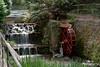 Noria_Jardín_Botánico (Antonio Capel Fernandez) Tags: noria cascada jardines paisajes asturias gijon españa