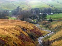 Yorkshire Dales Stream (saxonfenken) Tags: 7327river 7327 stream creek river farm village hamlet yorkshire dales misty tcfunam pregamewinner challengeyouwinner gamewinner perpetual
