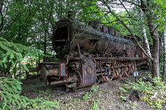 8Z1A8471-1 (wernkro) Tags: dampflok lostplace urbexen krokor gleis wald eisenbahn
