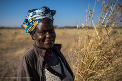 A villager cutting hay for a roof repair, Serengeti, Tanzania, June 2017 (Catherine Gidzinska and Simon Gidzinski) Tags: 2017 africa mararegion tanzania woman ngc portrait serengeti 7dwf