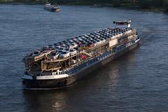 RoRo Ingona - 2326588 (5B-DUS) Tags: roro ingona 2326588 binnenschiff schiff ship barge vessel rhein