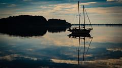 Der Sonne entgegen2... (davidhorrmann) Tags: sonnenaufgang wasser meer boot digital zuiko polfilter olympusem5 bucht