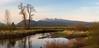Vast Life (briantolin) Tags: mapleridge britishcolumbia dyke river creek stream water landscape path nature allouetteriver