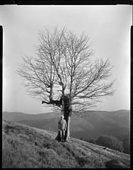 dans la montagne - debout avec mon vieil ami (JJ_REY) Tags: arbre tree montagne mountain autoportrait selfportrait film bw largeformat 4x5 fomapan100classic toyofield 45a rodenstock sironarn 150mmf56 rodinal epson v800 alsace france