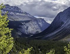 Rockies x 5-1 (vern Ri) Tags: mountains rockies ab alberta canada nikon d70