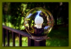Fence with the light bowl (SnežanaQ) Tags: fence metal glassbowl lightbulb tree grass garden summer outdoor reflection