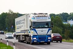 DAF XF105 SSC / Andre Van Olst (H) (almostkenny) Tags: lkw truck camion ciężarówka reaction daf xf105 ssc superspacecab andrevanolst livestock avo005 h hungary magyarország