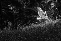 Sony A7R III + Tamron SP 15-30/2.8 Di VC USD (viktor_viktor) Tags: act nudity bw artistic athletic wwwverybiglobocom viktorpavlovic
